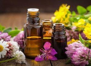 natural fat burning oils